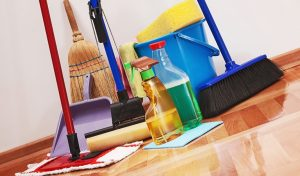 Cleaning Services in Goa